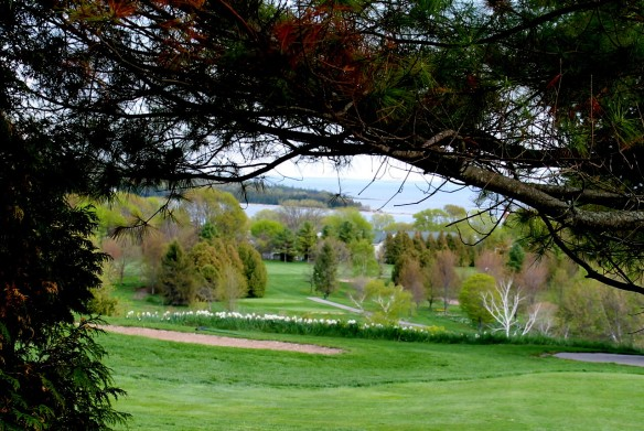 Looking through the trees, across the Grand Hotel Golf Course to the Straits.