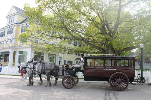 A Grand Hotel bus waits under a tree at the Windermere Hotel.