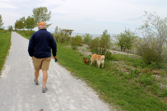 We're loving this walk along the shore in front of Mission Point each day!