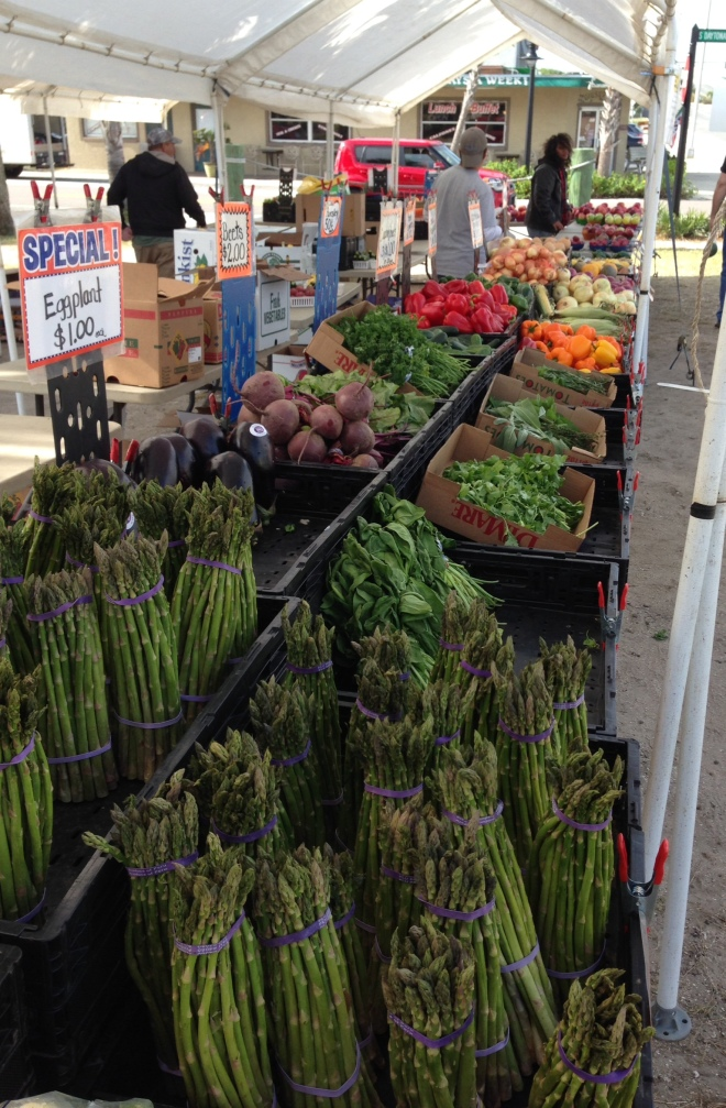 We visited the Flagler Beach Farmer's Market for the first time Saturday morning.  The market is open Friday and Saturday year-round, and . . . .