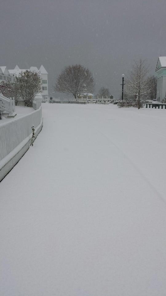 East Bluff snow.  (Photo: Doud's Market)