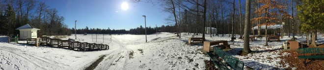 A panoramic shot of Turtle Park from Josh Carley.
