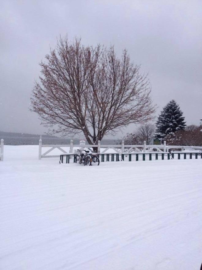 A simply beautiful snowy scene from Orietta Barquero.