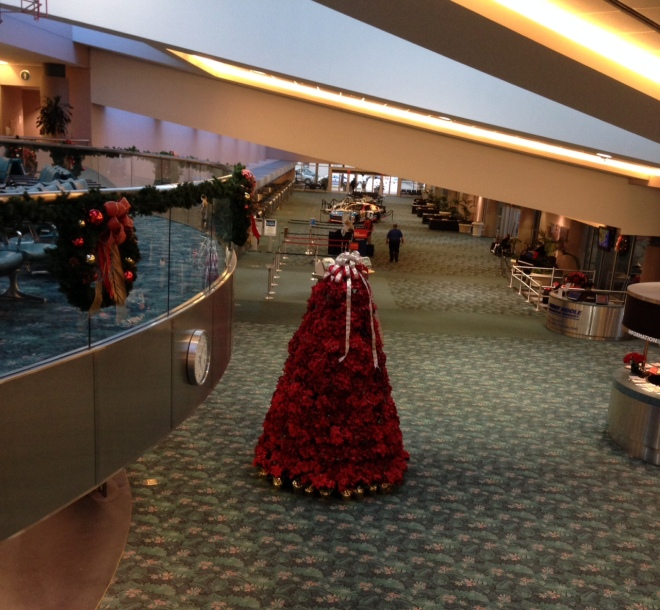 I picked Blake up at the Daytona Beach Airport this week and had to get a snapshot of their amazing Poinsettia Christmas tree - all live!
